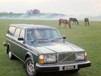 thumbnail image of 1975 Volvo 265