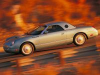2002 Ford Thunderbird, 16 of 47