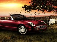 2005 Ford Thunderbird, 1 of 6