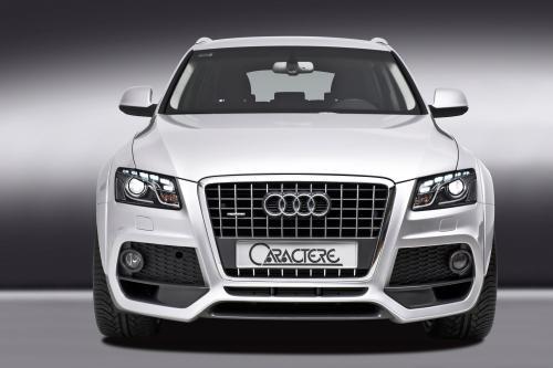 Audi Q5 2009 года по CARACTERE - фотография audi