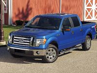 2009 Ford F-150, 6 of 18