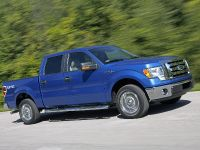 2009 Ford F-150, 7 of 18