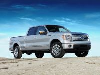 2009 Ford F-150, 14 of 18