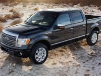 2009 Ford F-150, 13 of 18