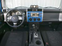 2009 Toyota FJ Cruiser, 6 of 18