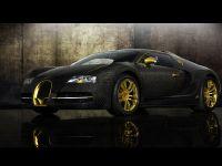 2010 Bugatti Veyron Linea Vincero d\'Oro, 14 of 20