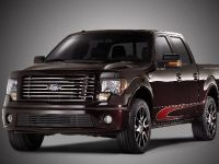 2010 Ford Harley-Davidson F-150, 17 of 17