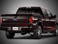 2010 Ford Harley-Davidson F-150, 16 of 17