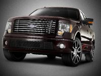 2010 Ford Harley-Davidson F-150, 15 of 17
