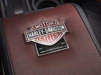 2010 Ford Harley-Davidson F-150, 9 of 17