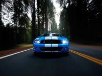 2010 Ford Shelby GT500, 64 of 68