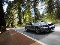 2010 Ford Shelby GT500, 10 of 68