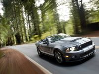 2010 Ford Shelby GT500, 11 of 68