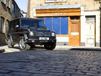 2010 Mercedes-Benz G-Class, 10 of 19