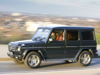 2010 Mercedes-Benz G-Class, 15 of 19