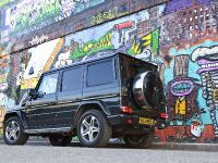 2010 Mercedes-Benz G-Class, 16 of 19