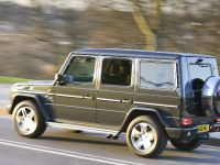 2010 Mercedes-Benz G-Class, 18 of 19