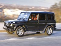 2010 Mercedes-Benz G-Class, 19 of 19