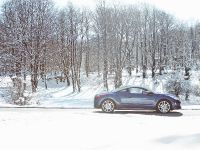 2010 Peugeot RCZ Sports Coupe, 10 of 11