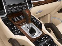2010 Porsche Cayenne S Hybrid, 12 of 16