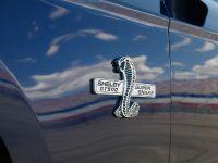 2010 Shelby GT500 Super Snake, 3 of 21