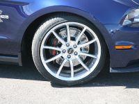 2010 Shelby GT500 Super Snake, 7 of 21
