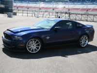 2010 Shelby GT500 Super Snake, 14 of 21
