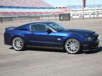 2010 Shelby GT500 Super Snake, 17 of 21