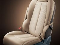 2011 Buick GL8, 18 of 28