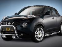 2011 Cobra N+ Nissan Juke, 4 of 7