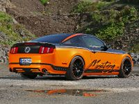 2011 Design World Ford Mustang, 11 of 19