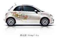 2011 Fiat 500 First Edition, 1 of 5