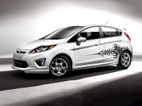 2011 Ford Fiesta custom accessories
