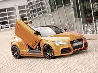 2011 Rieger Audi TT 8J, 3 of 12