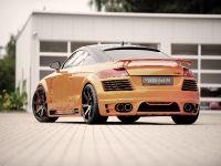 2011 Rieger Audi TT 8J, 5 of 12