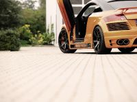 2011 Rieger Audi TT 8J, 6 of 12