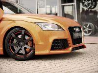 2011 Rieger Audi TT 8J, 9 of 12
