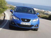 2011 SEAT Ibiza ST, 74 of 76