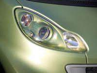 2011 Smart ForTwo Lightshine Edition, 14 of 15