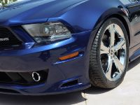 2011 SMS 302 Ford Mustang, 8 of 20