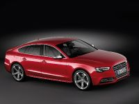 2012 Audi S5 Sportback, 8 of 25