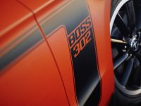 2012 Ford Mustang Boss 302, 20 of 22