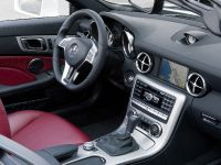 2012 Mercedes SLK 250 CDI, 9 of 10