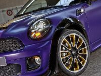 2012 Franca Sozzani MINI Roadster, 12 of 16