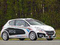 2012 Peugeot 208 R2, 10 of 19