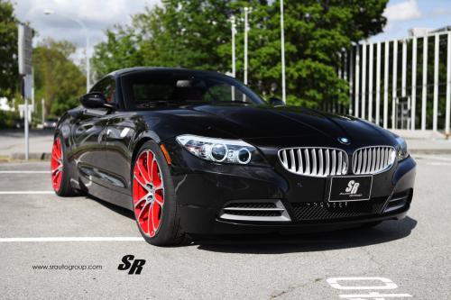 2012 SR BMW Z4 - все растения
