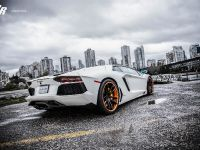2012 SR Lamborghini Aventador Project Supremacy, 4 of 6