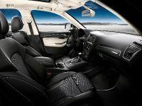 2013 Audi SQ5 TDI Exclusive Concept, 2 of 3