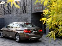 2013 BMW 3-Series Li, 4 of 25