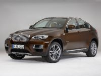 2013 BMW X6 Sports Activity Coupe, 11 of 11